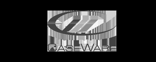 caseware